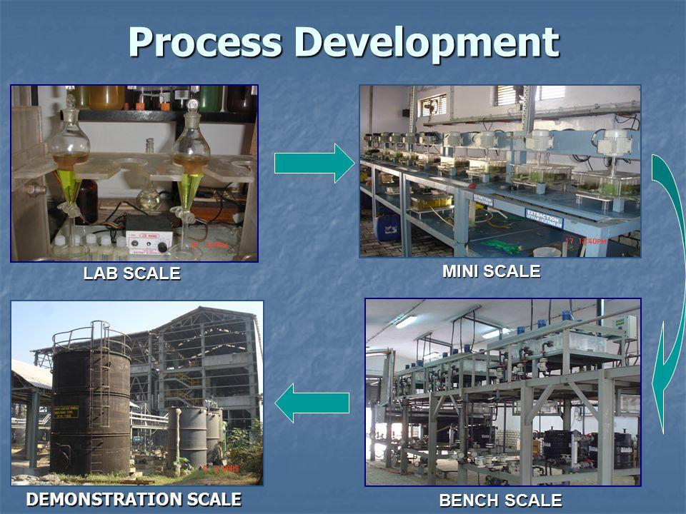 Process Development MINI SCALE LAB SCALE DEMONSTRATION SCALE