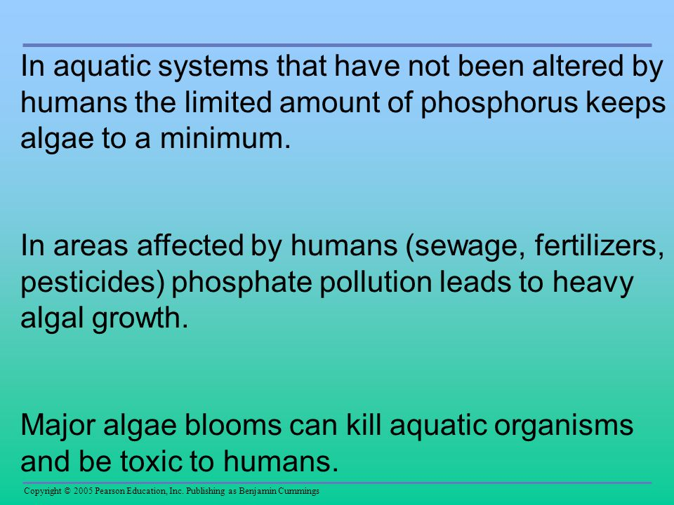 In aquatic systems that have not been altered by humans the limited amount of phosphorus keeps algae to a minimum.