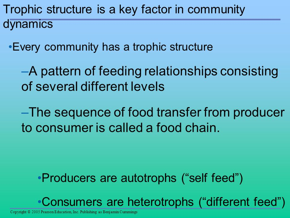 Trophic structure is a key factor in community dynamics