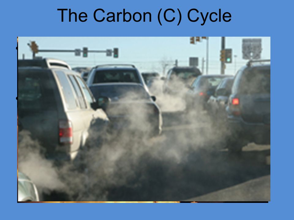 The Carbon (C) Cycle CO2 is an important Greenhouse gas helping keep the planet at a relatively stable temperature.