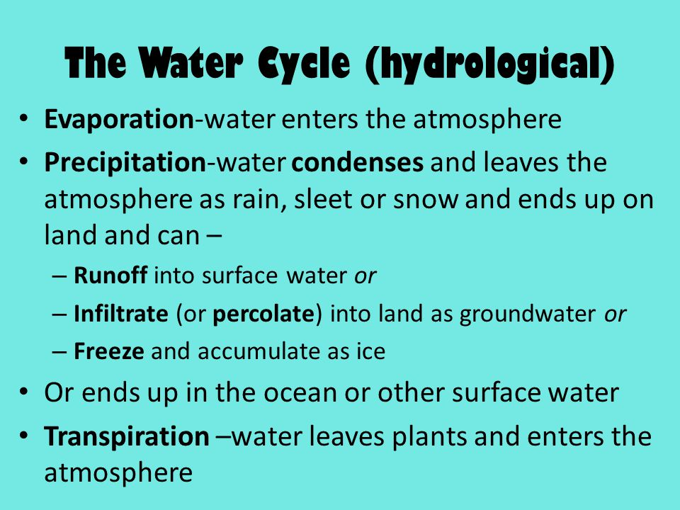 The Water Cycle (hydrological)
