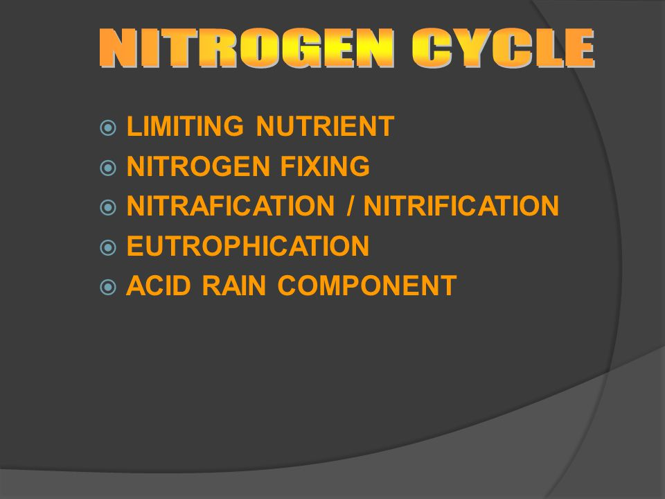 NITROGEN CYCLE LIMITING NUTRIENT NITROGEN FIXING