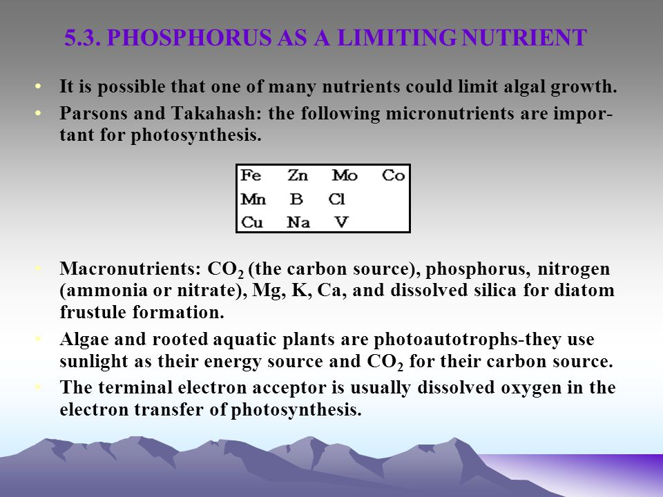 5.3. PHOSPHORUS AS A LIMITING NUTRIENT