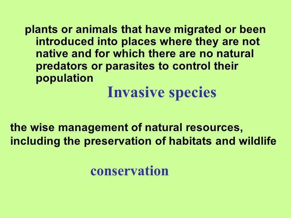 Invasive species conservation