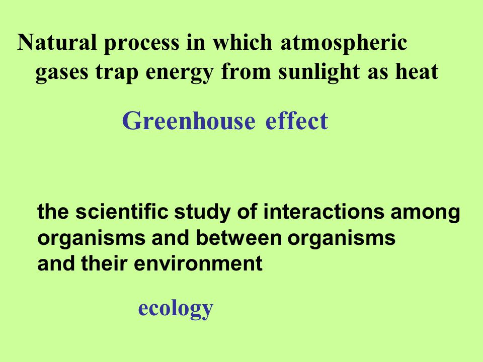 Natural process in which atmospheric gases trap energy from sunlight as heat