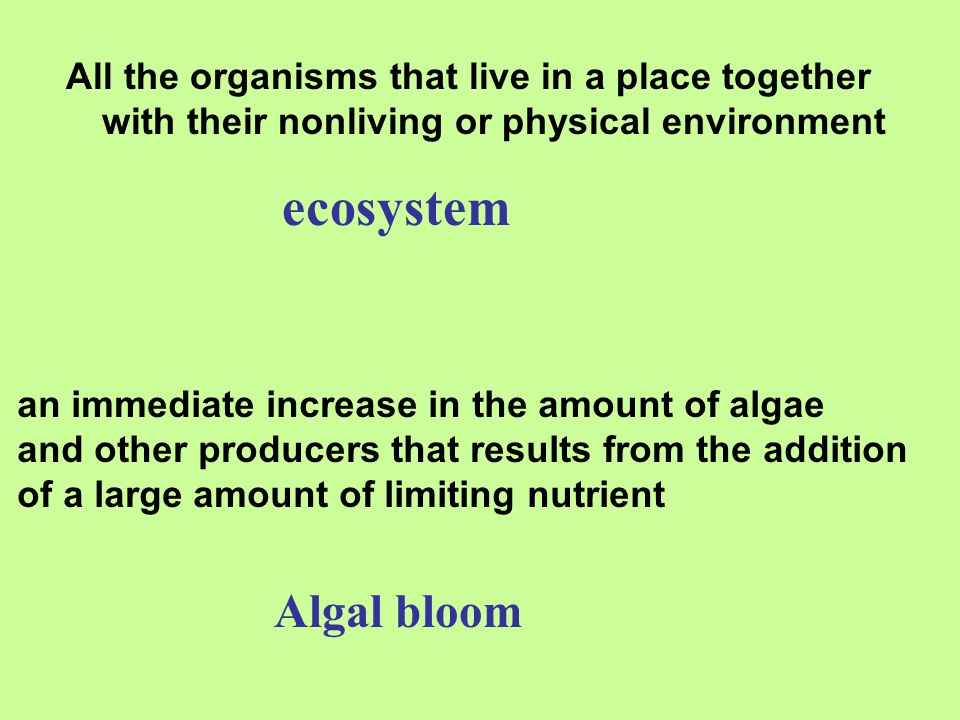 All the organisms that live in a place together with their nonliving or physical environment
