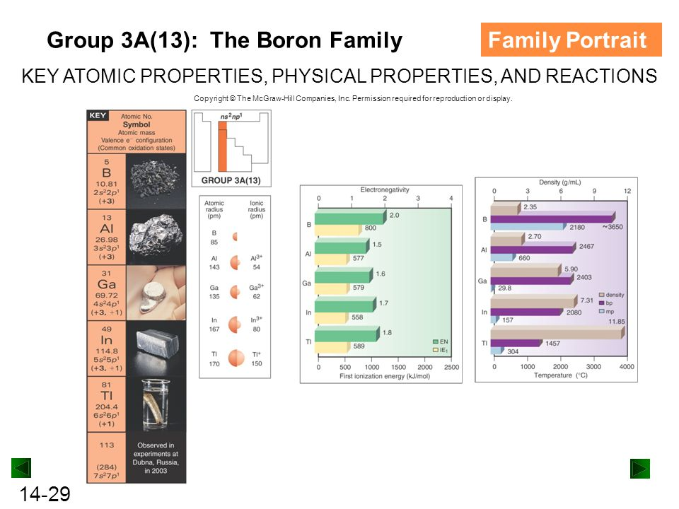Group 3A(13): The Boron Family Family Portrait