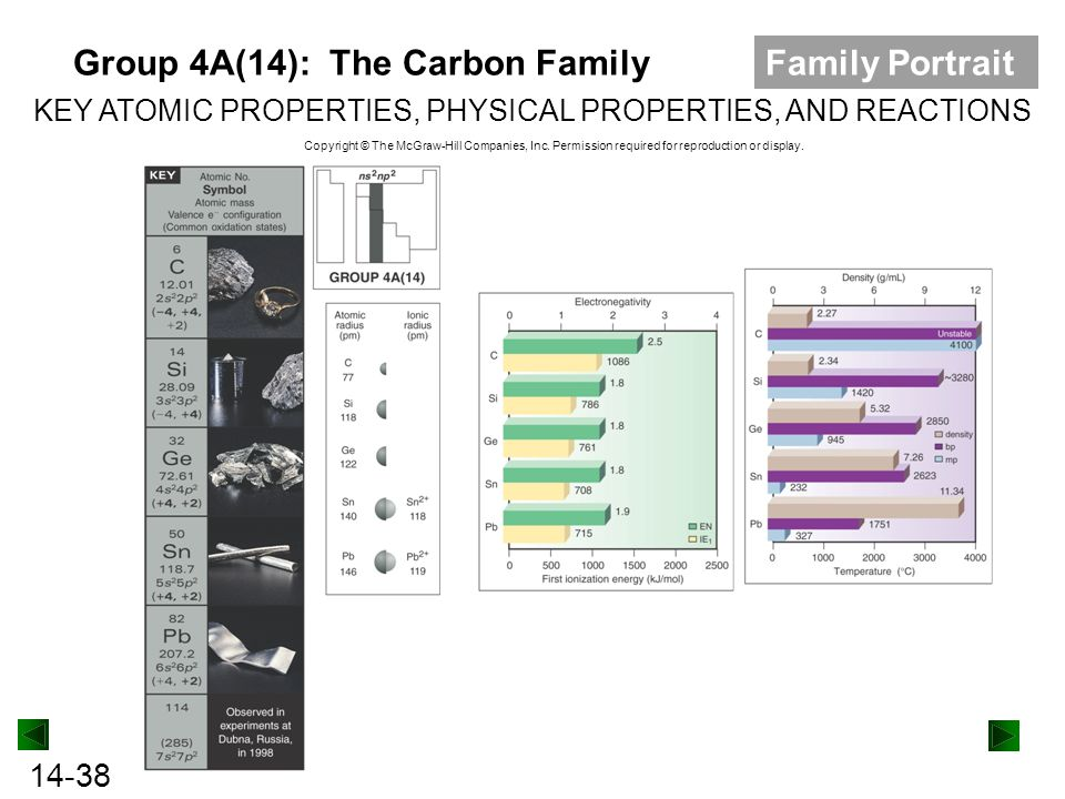 Group 4A(14): The Carbon Family Family Portrait