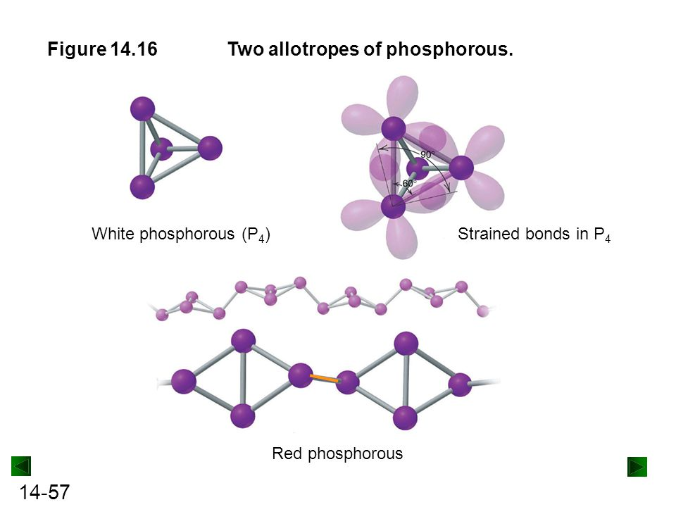 Two allotropes of phosphorous.
