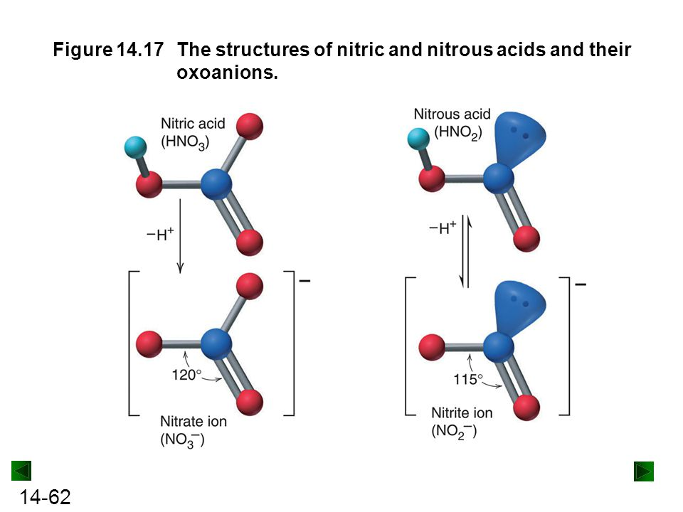 Figure 14.17 The structures of nitric and nitrous acids and their oxoanions.