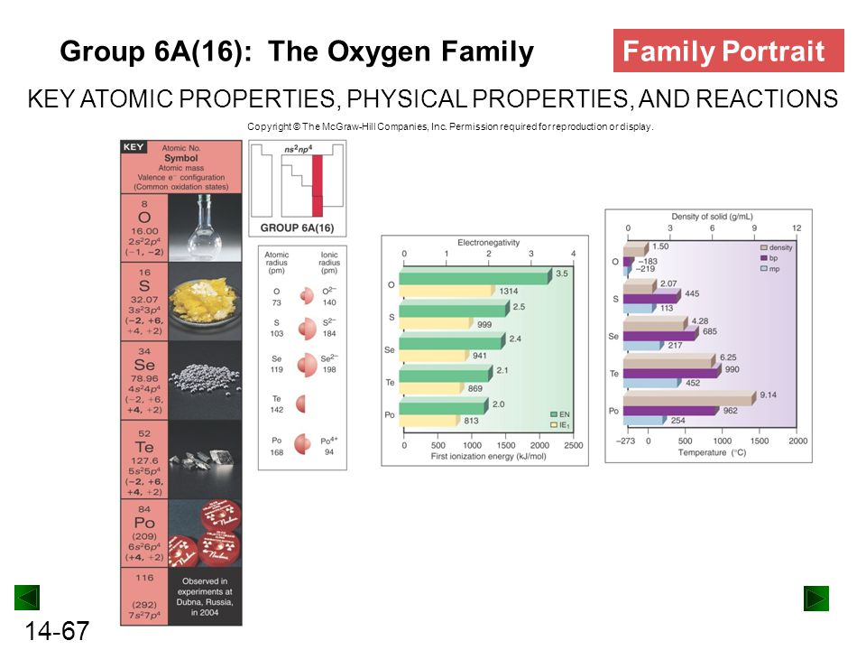 Group 6A(16): The Oxygen Family Family Portrait