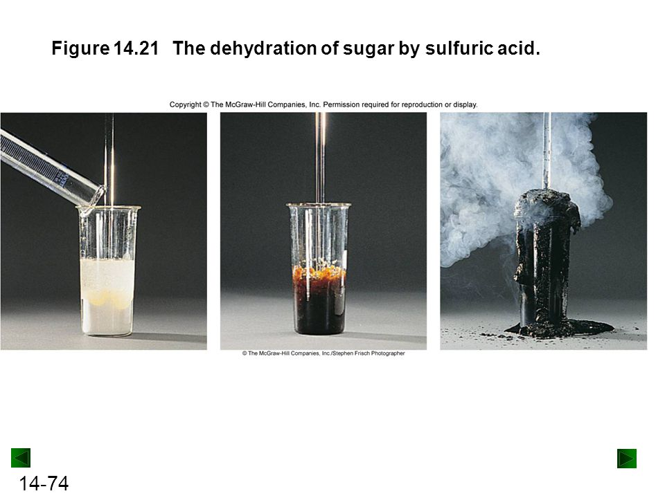 Figure 14.21 The dehydration of sugar by sulfuric acid.