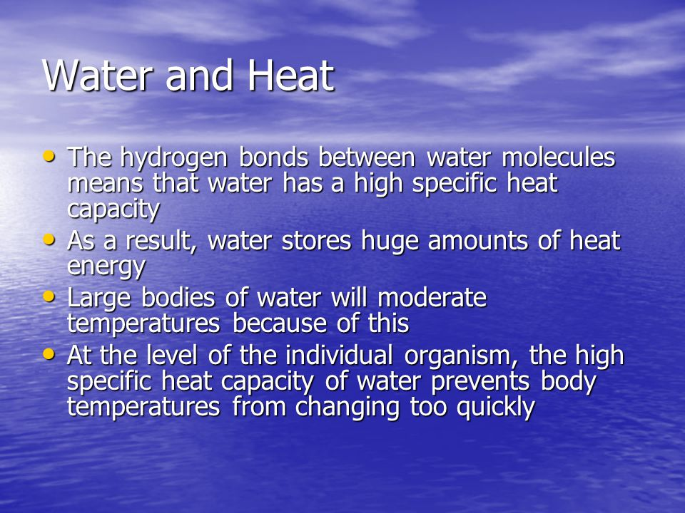 Water and Heat The hydrogen bonds between water molecules means that water has a high specific heat capacity.