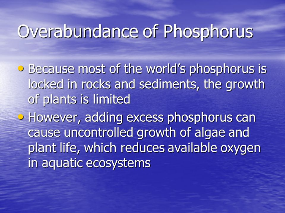 Overabundance of Phosphorus