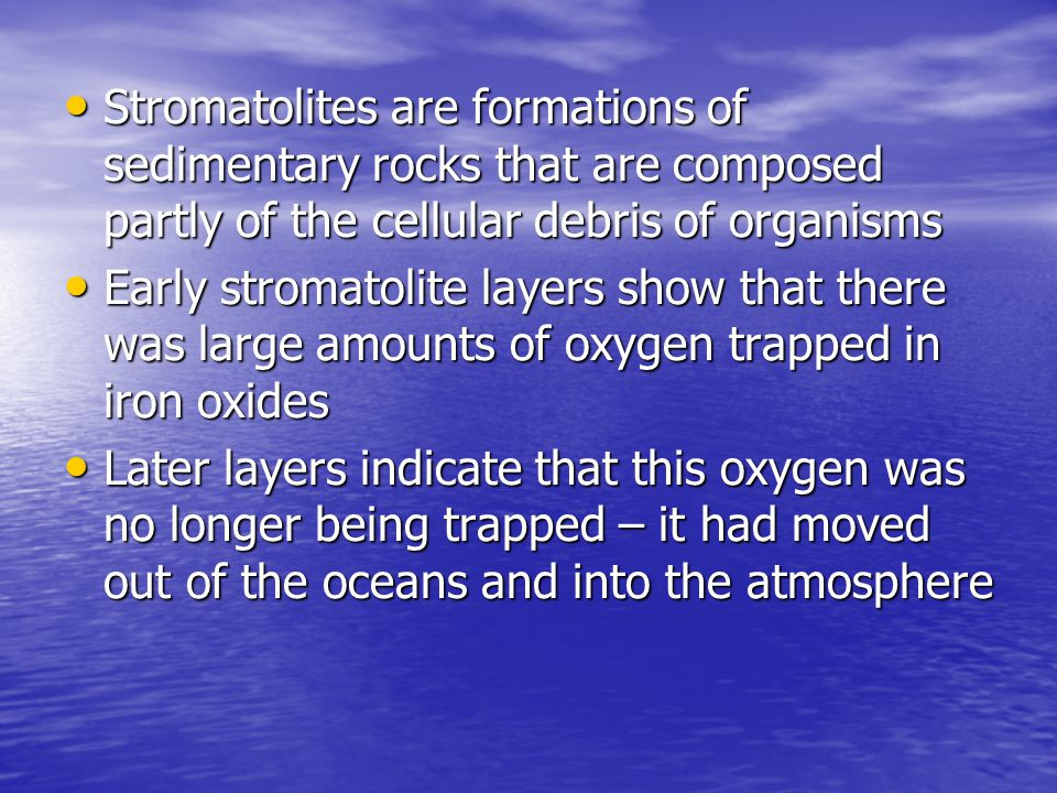 Stromatolites are formations of sedimentary rocks that are composed partly of the cellular debris of organisms