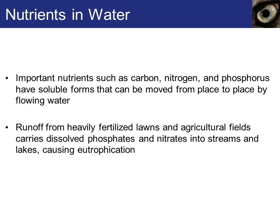Nutrients in Water