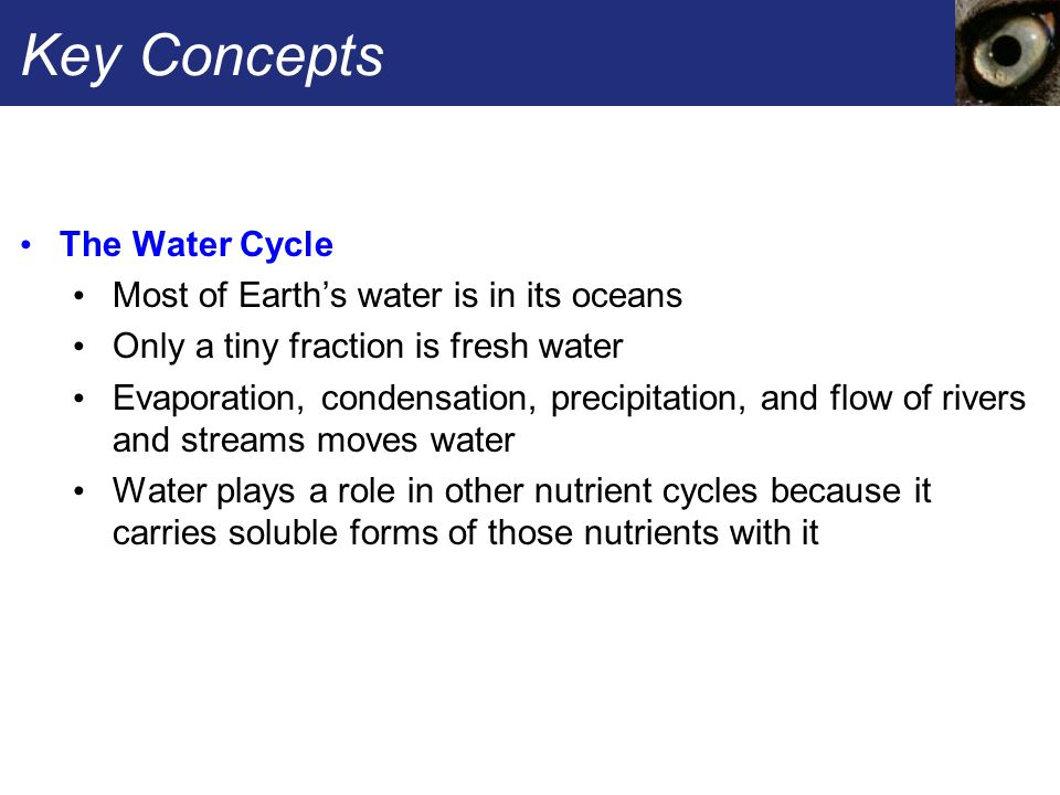 Key Concepts The Water Cycle Most of Earth's water is in its oceans