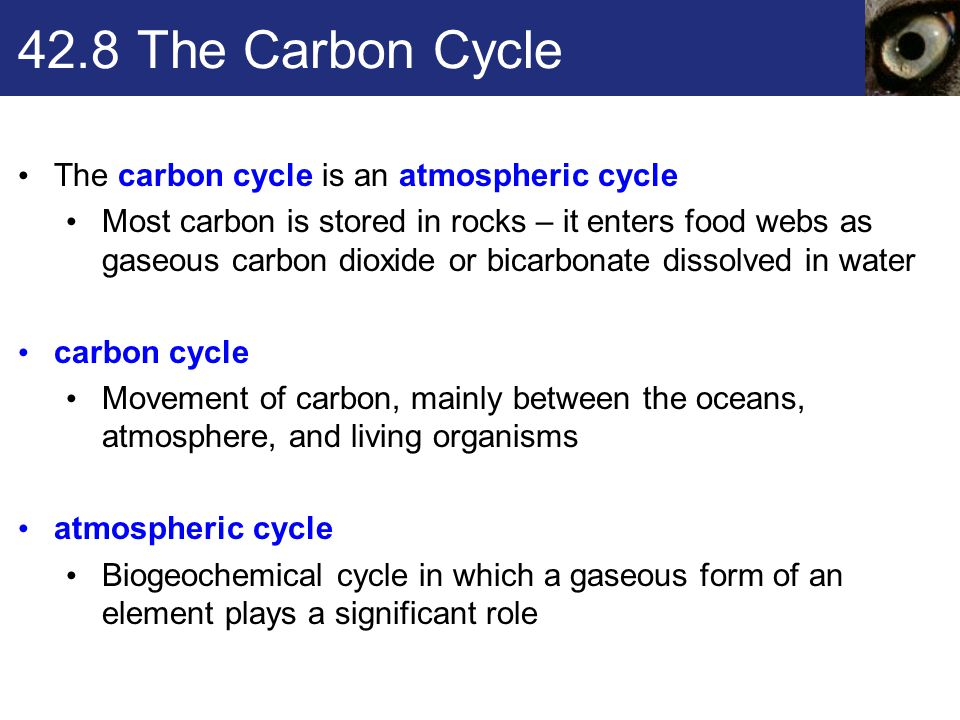 42.8 The Carbon Cycle The carbon cycle is an atmospheric cycle