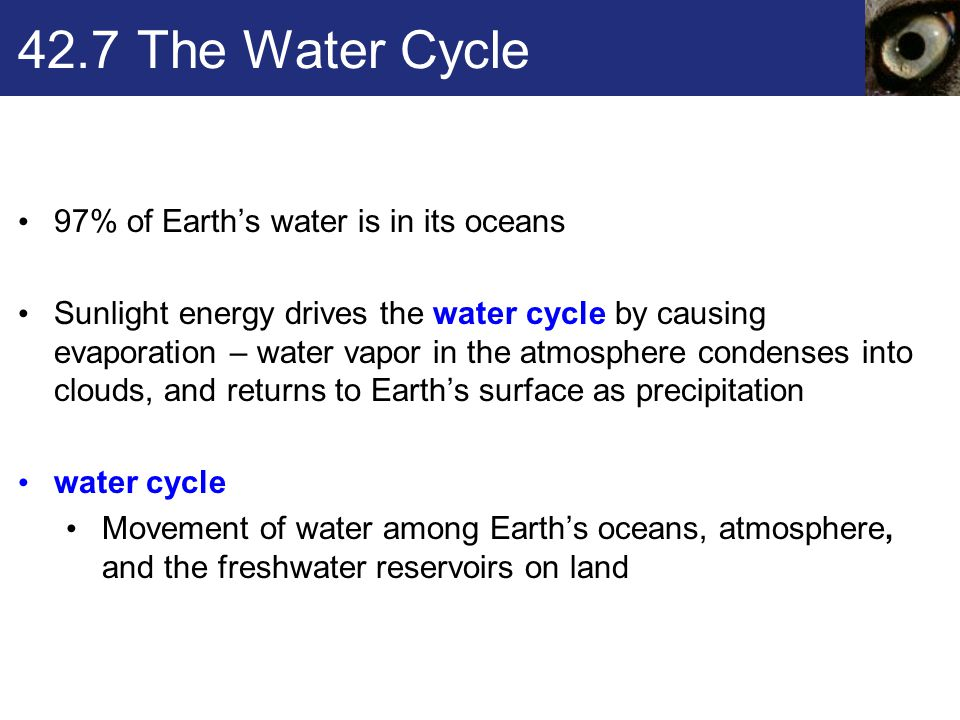 42.7 The Water Cycle 97% of Earth's water is in its oceans