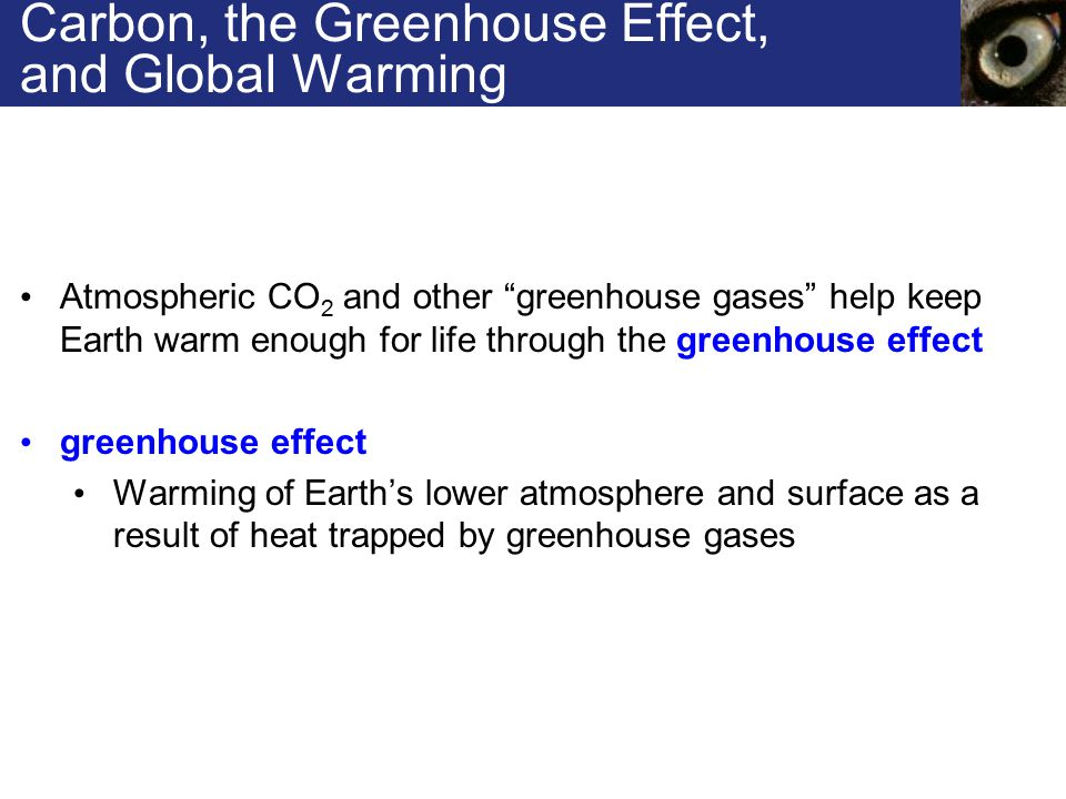 Carbon, the Greenhouse Effect, and Global Warming