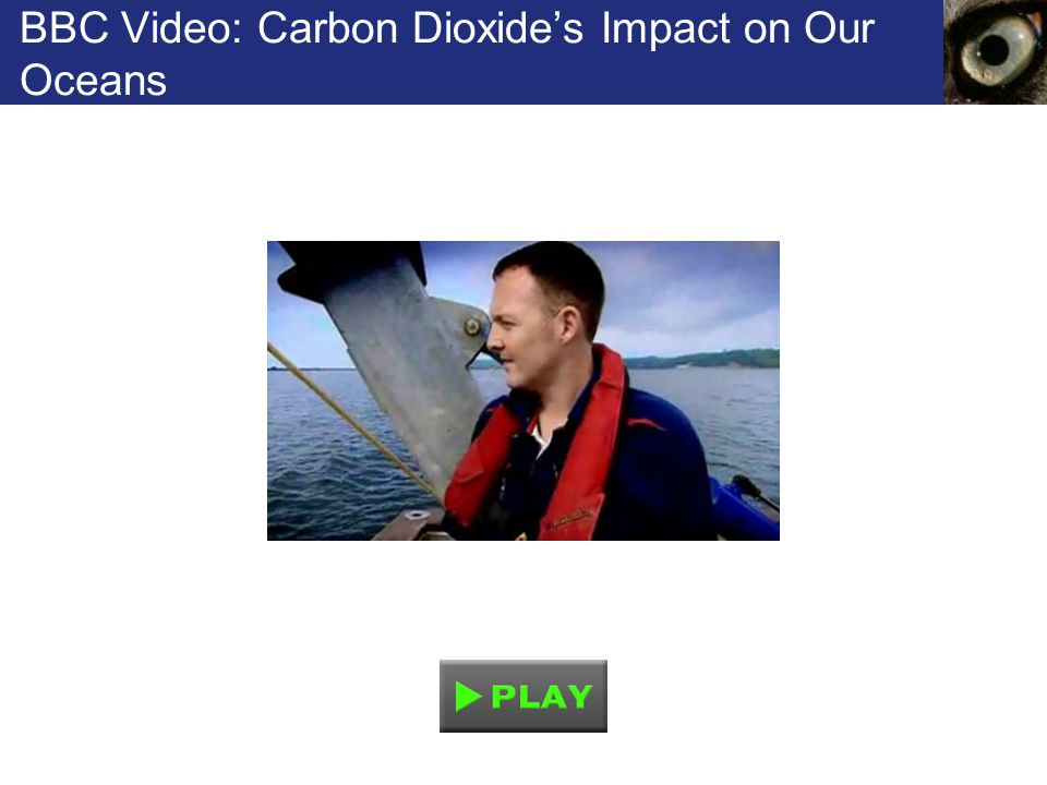 BBC Video: Carbon Dioxide's Impact on Our Oceans