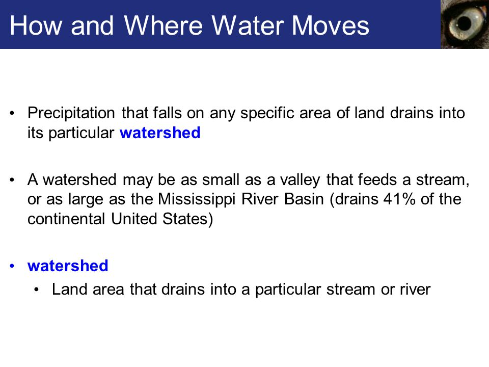 How and Where Water Moves