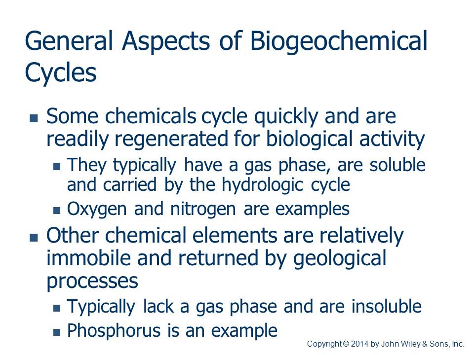 General Aspects of Biogeochemical Cycles
