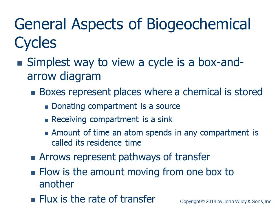General Aspects of Biogeochemical Cycles
