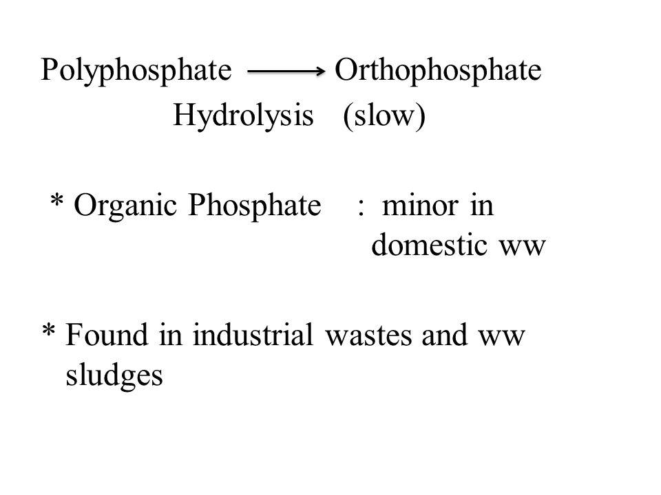 Polyphosphate Orthophosphate Hydrolysis (slow)