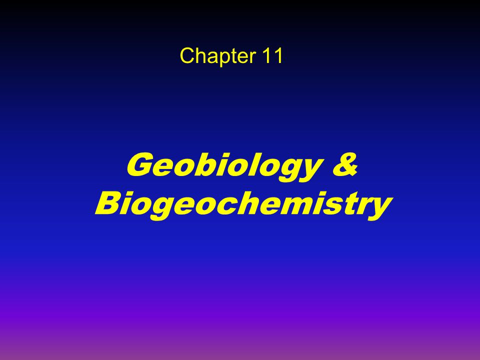 Geobiology & Biogeochemistry