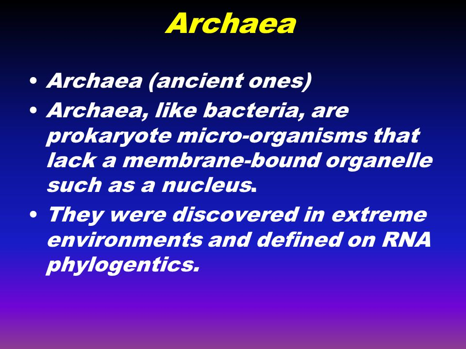 Archaea Archaea (ancient ones)