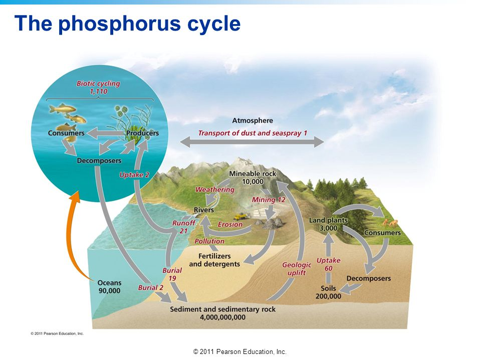 download Kissed By