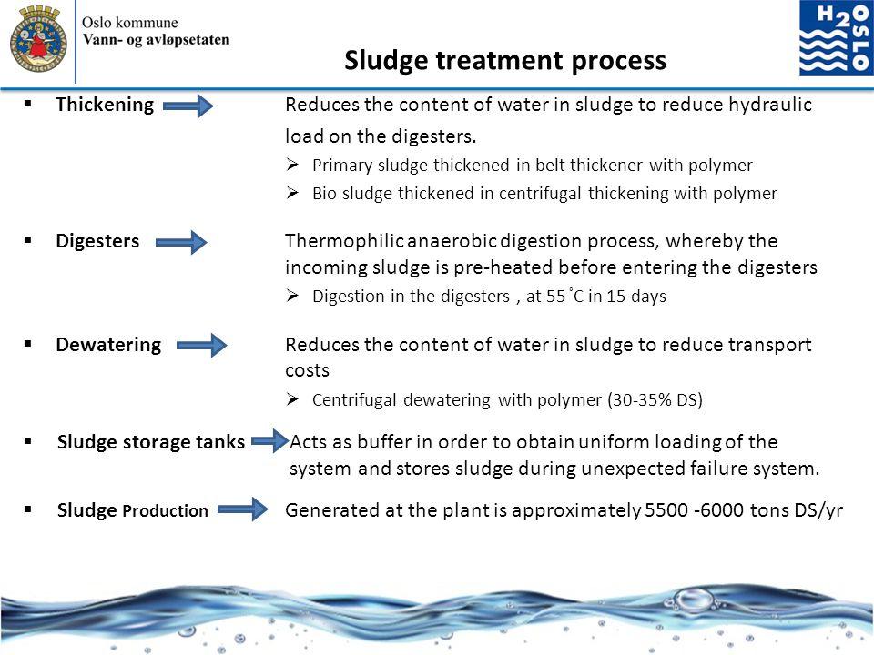 Sludge treatment process