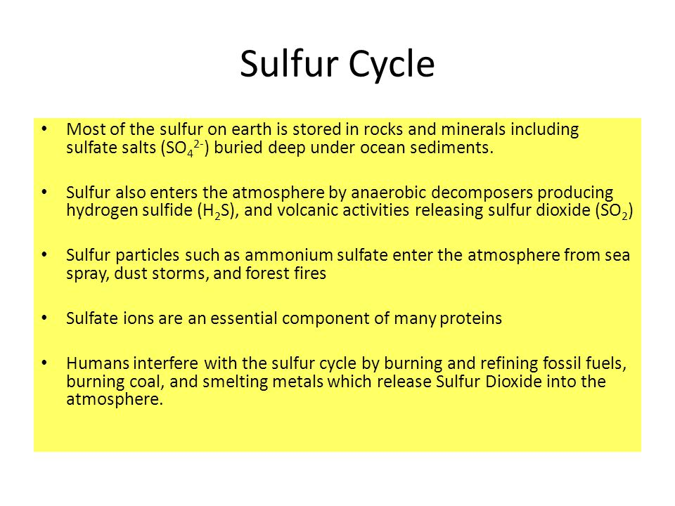 Sulfur Cycle Most of the sulfur on earth is stored in rocks and minerals including sulfate salts (SO42-) buried deep under ocean sediments.