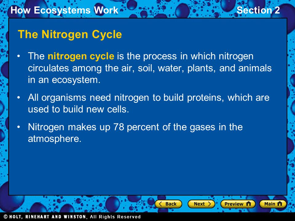 The Nitrogen Cycle The nitrogen cycle is the process in which nitrogen circulates among the air, soil, water, plants, and animals in an ecosystem.
