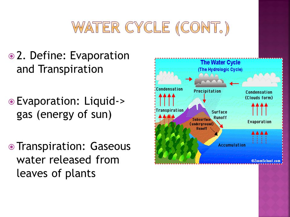 Water Cycle (cont.) 2. Define: Evaporation and Transpiration