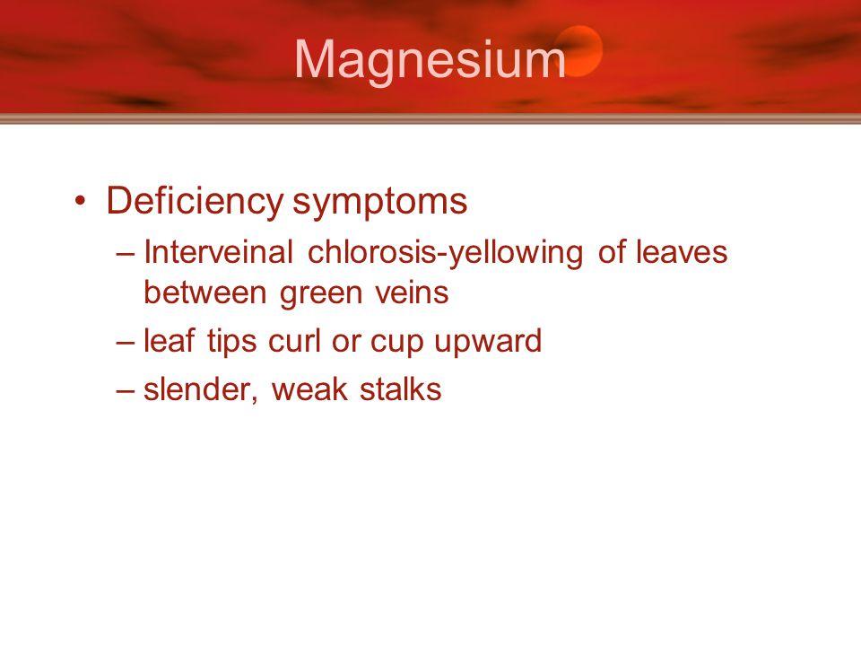 Magnesium Deficiency symptoms