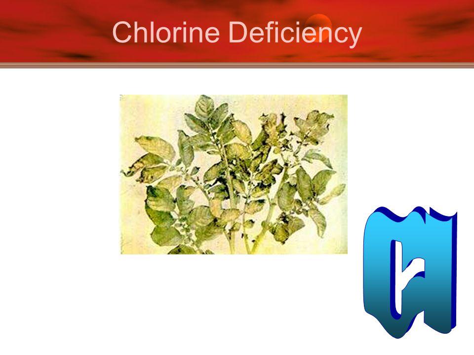 Chlorine Deficiency Cl