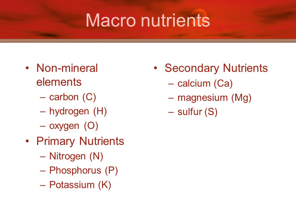 Macro nutrients Non-mineral elements Primary Nutrients