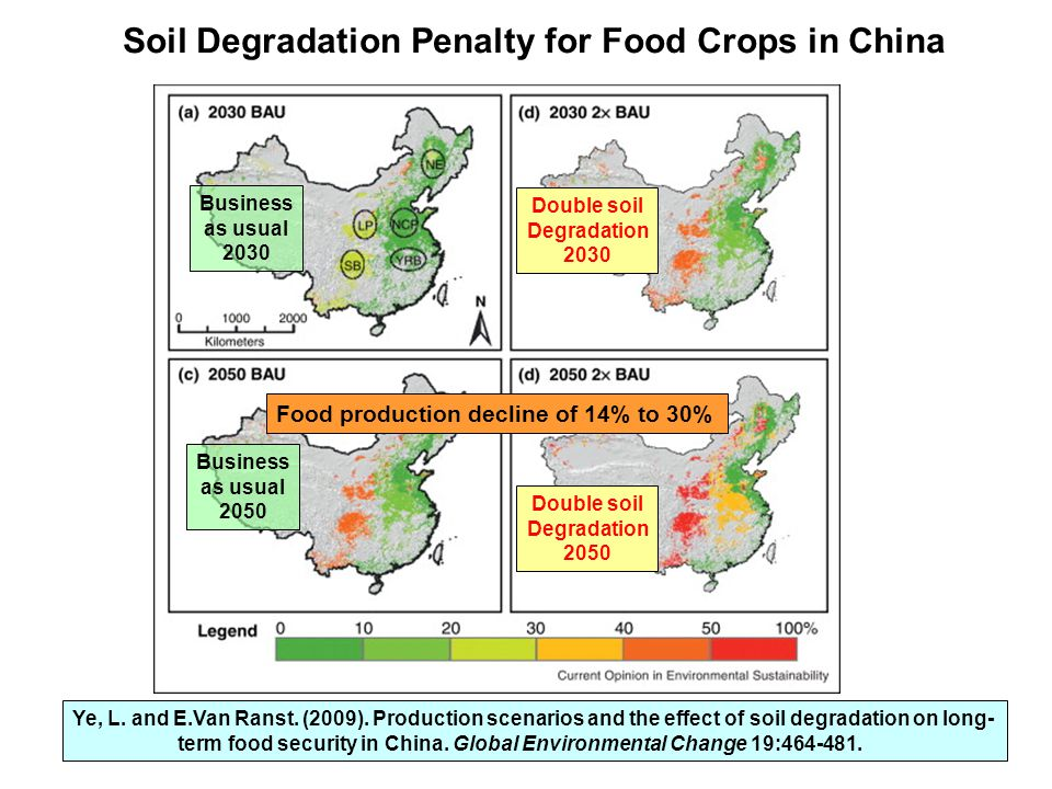 Soil Degradation Penalty for Food Crops in China