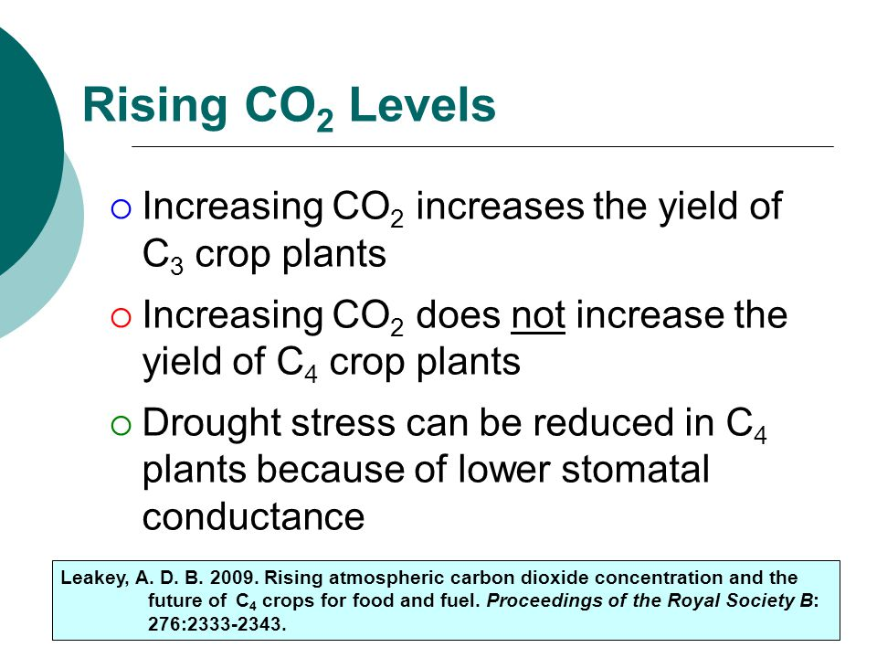 Rising CO2 Levels Increasing CO2 increases the yield of C3 crop plants
