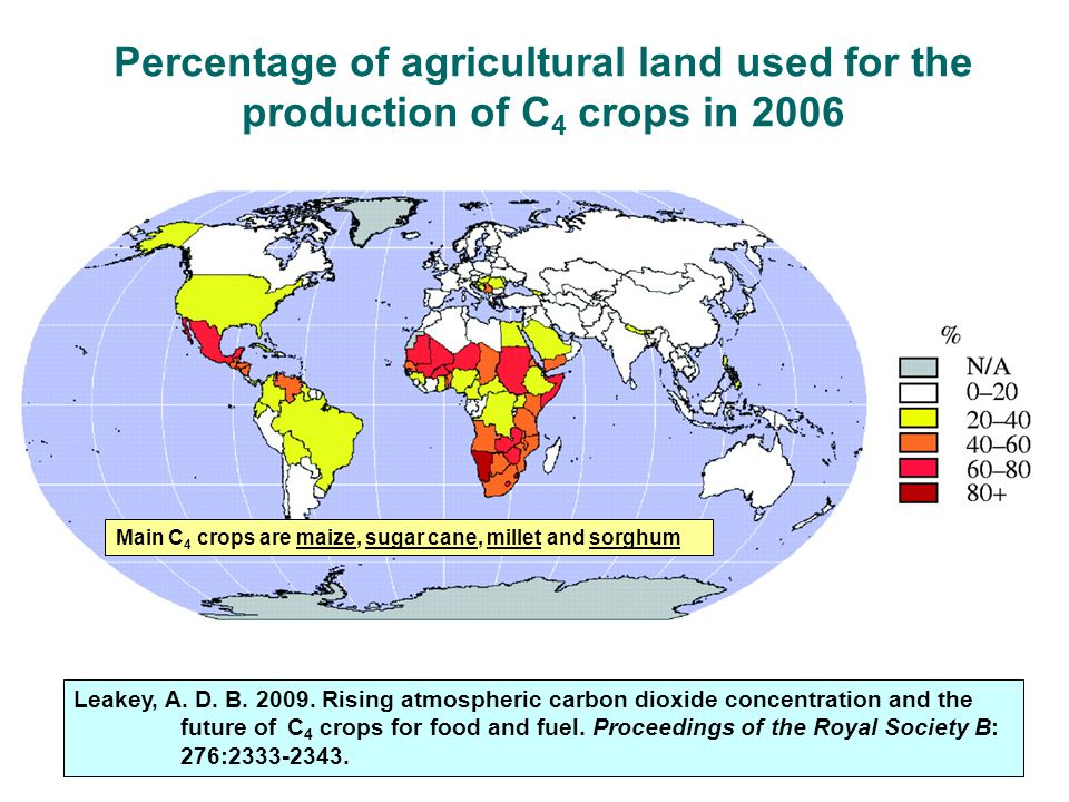 Percentage of agricultural land used for the production of C4 crops in 2006