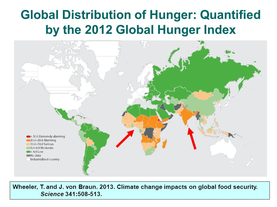 Global Distribution of Hunger: Quantified by the 2012 Global Hunger Index