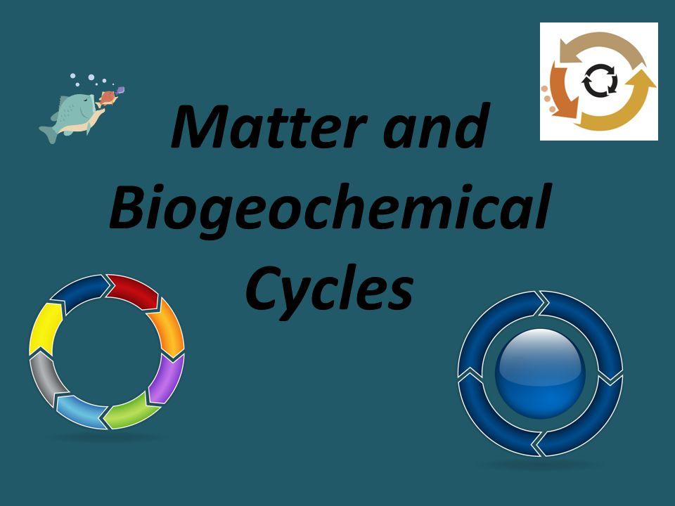 Matter and Biogeochemical Cycles