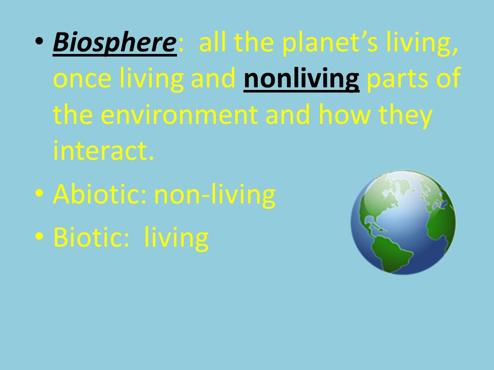 Biosphere: all the planet's living, once living and nonliving parts of the environment and how they interact.