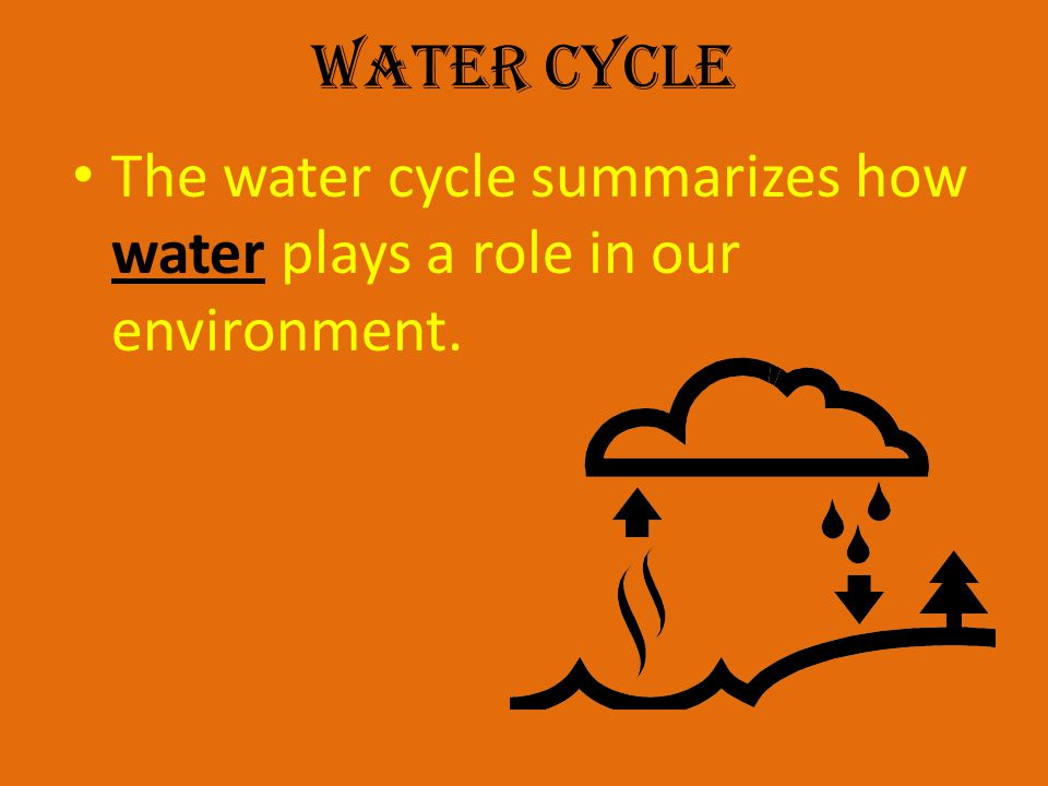 Water Cycle The water cycle summarizes how water plays a role in our environment.