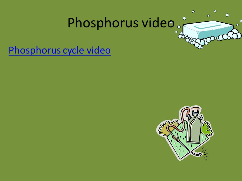 Phosphorus video Phosphorus cycle video
