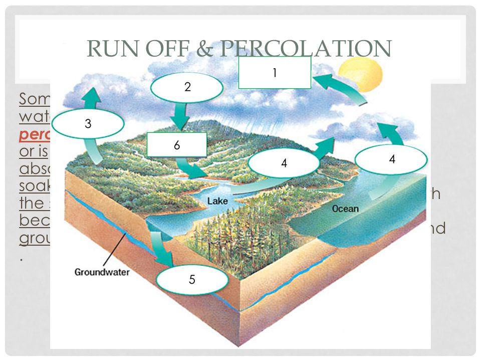 Run off & Percolation Some of this water percolates, or is absorbed or soaked into the soil and becomes groundwater.