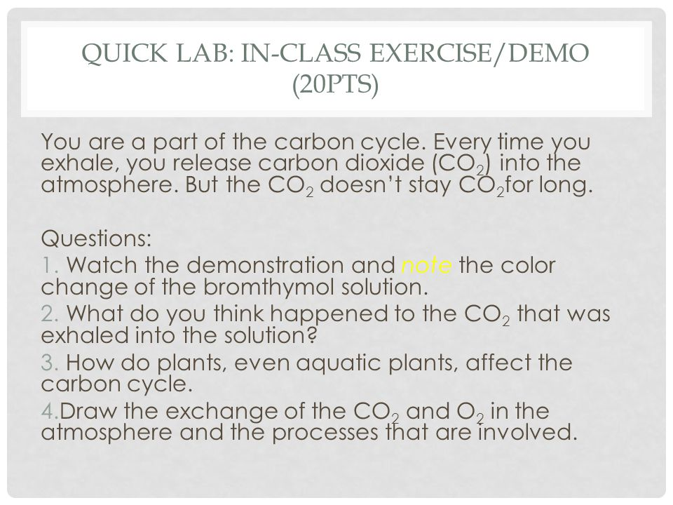 Quick Lab: In-class exercise/Demo (20pts)