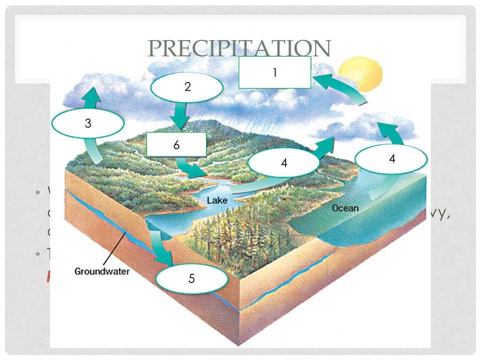 Precipitation When enough water accumulates in the atmosphere it collects a water droplets, gets heavy, and falls back to Earth.